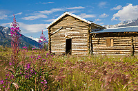 Historic Black Rapids Roadhouse.  The Black Rapids Roadhouse, established in 1902, is one of the last remaining original roadhouses on the historic Valdez-Fairbanks Trail; now the Richardson Highway.