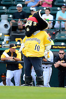 Bradenton Marauders mascot Marty during a game against the Fort Myers Miracle at McKechnie Field on April 7, 2013 in Bradenton, Florida.  Fort Myers defeated Bradenton 9-8 in ten innings.  (Mike Janes/Four Seam Images)