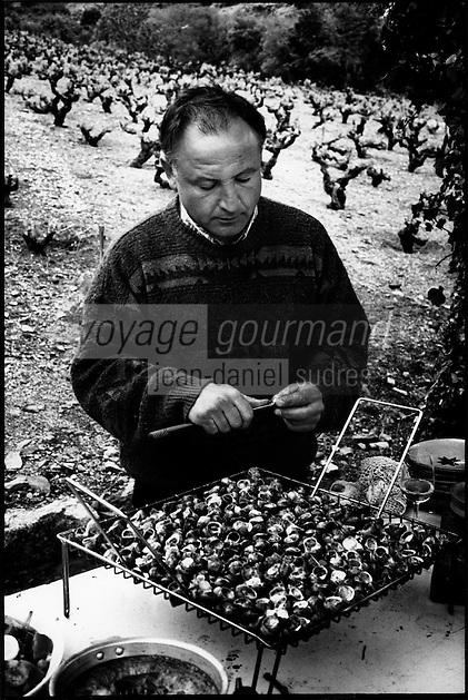 """Europe/France/Languedoc-Roussillon/66/Pyrénées-Orientales/Banyuls-sur-Mer: lors d'une """"Cargolade"""", repas d'escargots grillés avec aïoli, dans les vignes lors du dimanche de Pâques"""