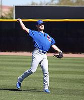 Ryan Jensen - Chicago Cubs 2020 spring training (Bill Mitchell)