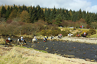 Horses Crossing North Sannox Burn, Sannox, Isle of Arran, Ayrshire<br /> <br /> Copyright www.scottishhorizons.co.uk/Keith Fergus 2011 All Rights Reserved