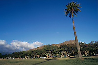 City Park, Honolulu, Oahu, Hawaii, USA, August 1996