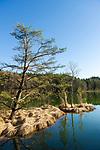 Deutschland, Bayern, Chiemgau, Eggstaett-Hemhofer Seenplatte: Fruehling am Einbessee | Germany, Upper Bavaria, Chiemgau, Eggstaett-Hemhof Lake district: early spring at Lake Einbessee