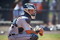 Detroit Tigers catcher Andres Sthormes (44) during a minor league Spring Training game against the New York Yankees on March 22, 2017 at the Yankees Complex in Tampa, Florida.  (Mike Janes/Four Seam Images)