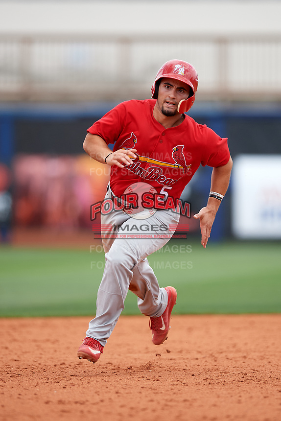 Palm Beach Cardinals first baseman Chris Chinea (5) running the bases during a game against the Charlotte Stone Crabs on April 12, 2017 at Charlotte Sports Park in Port Charlotte, Florida.  Palm Beach defeated Charlotte 8-7 in ten innings.  (Mike Janes/Four Seam Images)