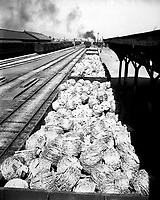 Railroad cars loaded with barbed wire at Taegu RTO (Railway Transportation Office), Korea.  July 24, 1950. Sgt. Riley.  (Army)<br /> NARA FILE #:  111-SC-344307<br /> WAR & CONFLICT BOOK #:  1404