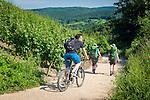 Germany, Rhineland-Palatinate, Ahr-Valley, Bad Neuenahr-Ahrweiler, district Ahrweiler: hiking and mountainbiking on AhrSteig hiking trail | Deutschland, Rheinland-Pfalz, Ahrtal, Bad Neuenahr-Ahrweiler, Stadtteil Ahrweiler: wandern und mountainbiken auf dem Rotweinwanderweg AhrSteig, entlang der Ahr-Rotweinstrasse