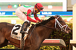 HALLANDALE BEACH, FL - JANUARY 14:  #2 Tommy Macho (KY) with jockey Luis Saez up wins the Hal's Hope G3 Stakes at Gulfstream Park on January 14, 2017 in Hallandale Beach, Florida. (Photo by Liz Lamont/Eclipse Sportswire/Getty Images)