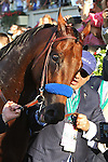 June 6, 2015: Ahmed Zayat leads American Pharoah down Victory Lane to the winner's circle. American Pharoah, Victor Espinoza up, wins the 147th running of the Grade I  Belmont Stakes and with it the Triple Crown at Belmont Park, Elmont, NY.  Joan Fairman Kanes/ESW/CSM