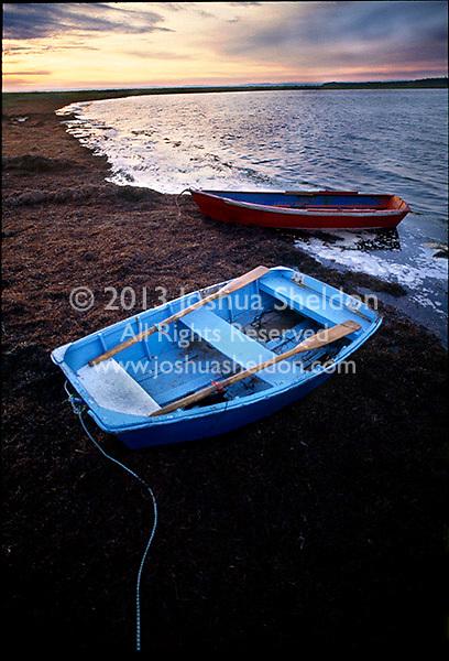 Tied up rowboats at sunset
