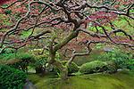Portland Japanese Garden, Oregon, USA