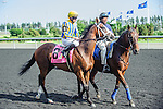 Lions Bay(8) with Jockey David Moran aboard at the 155th Queen's Plate at Woodbine Race Course in Toronto, Canada on July 06, 2014.
