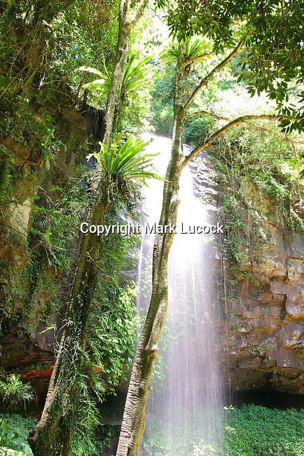 Crystal Shower Falls, Dorrigo National Park, NSW