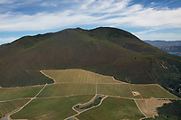 aerial photograph of vineyards on the southern slopes of Mount Konocti, Lake County, California