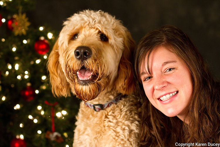 Griffy, a golden doodle, is photographed with his owner Sara Kepa, at a Muttmixer holiday party thrown by City Dog magazine in Seattle, WA on December 09, 2010. (photo by Karen Ducey)