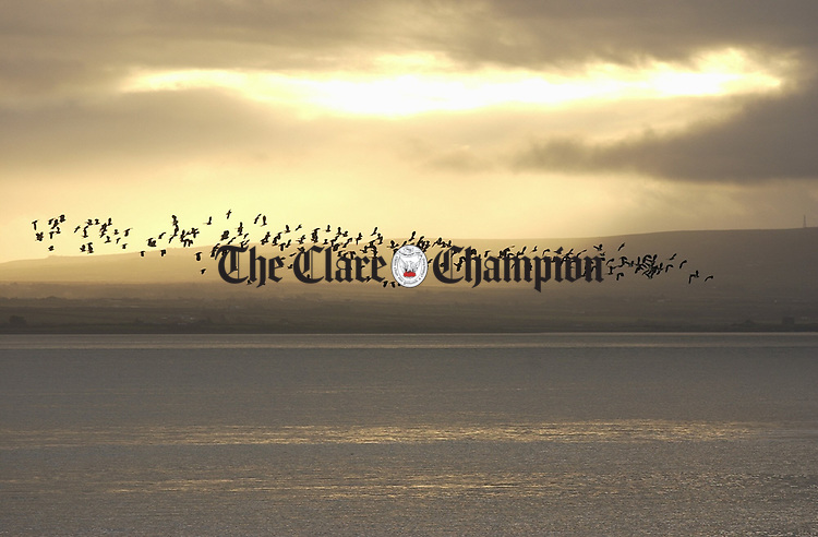 A flock of birds take flight against the winter sky near Moneypoint. Photograph by John Kelly.