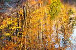 10.28.11 - Color Blotches