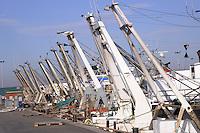 - Pila, comune Porto Tolle, nel delta del fiume Po in provincia di Rovigo, porto peschereccio....- Pila, municipality of Porto Tolle, delta of river Po in the province of Rovigo, the fishing port
