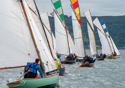 The Howth 17s mustered 12 boats and found a flash of sunshine for their start, with Peter Courtney's Oonagh (17) and the Turvey brothers' Isobel getting the best of it at the far end of the line. Photo: Annraoi Blaney
