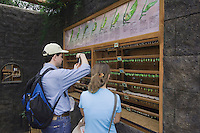 Tourists enjoying Hummingbird Gallery, La Paz Waterfall Gardens, Central Valley, Costa Rica, Central America, December 2006