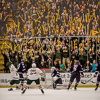 20 January 2017: University of Vermont fans celebrate a Catamount goal as University of Connecticut Huskies Goaltender Adam Huska, a Freshman from Zvolen, Slovakia, can only look back at the net in the first period at Gutterson Fieldhouse in Burlington, Vermont. The Catamounts held onto their lead throughout the game to defeat the Huskies 5-4 in Hockey East play. Mandatory Credit: Ed Wolfstein Photo *** RAW (NEF) Image File Available ***