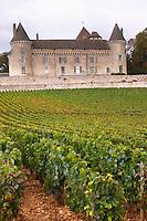 chardonnay vineyard chateau de rully burgundy france