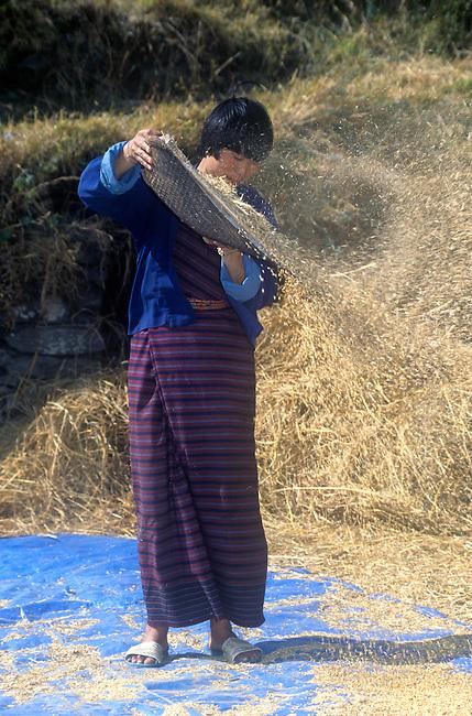 Winnowing Rice, Bhutan