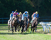 Aiken Fall Races - 10/26/2013