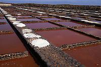 Las Salinas del Carmen, Fuerteventura, Kanarische Inseln, Spanien