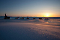 Aliy Zirkle runs on the Unalakleet slough in 20 mph wind and sub-zero temperatures after leaving Unalakleet at sunset during the 2010 Iditarod