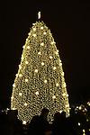 White House Christmas tree Washington DC, Fine Art Photography by Ron Bennett, Fine Art, Fine Art photo, Art Photography,