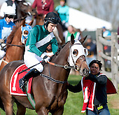 International Gold Cup Races - 10/24/2015