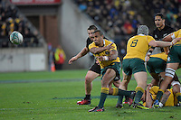 Wallabies' Will Genia in action during the All Blacks v Wallabies. The Rugby Championship & Bledisloe Cup at Westpac Stadium, Wellington, New Zealand on Saturday 27 August 2016.<br /> Photo by Masanori Udagawa. <br /> www.photowellington.photoshelter.com.