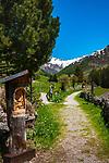Italien, Suedtirol (Trentino - Alto Adige), Prettau - Weiler Kasern: Wanderwege am Ende des Ahrntals, Italiens noerdlichste Gemeinde im Naturpark Rieserferner-Ahrn, im Hintergrund die Berge der Grossvenedigergruppe | Italy, South Tyrol (Trentino - Alto Adige), Prettau (Predoi) - district Kasern (Casere), hiking trails at valley end of  Tauferer Ahrntal (Valli di Tures e Aurina), at background Venediger Group mountains
