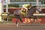 Graybar with Edgar Prado wins the 57th running of the Grade 1 Donn Handicap for 4 year olds & up, going 1 1/8 mile, at Gulfstream Park.  Trainer - Todd Pletcher.  Owner - Twin Creek Racing Stable