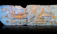 Roman Fresco with boats and marine life from the second quarter of the first century AD. (mosaico fauna marina da porto fluviale di san paolo), museo nazionale romano ( National Roman Museum), Rome, Italy. inv. 121462 .  Against a black background.<br /> The frescoes depict boats decorated as boats which went along the Tiber on festival days; their shape appears to be the caudicariae boats, used to transport merchandise. In the fresco fragment exhibited here (Ambiente E) the boat on the left depicts probably the group of 'side Serapide and Demetra on the stern, whereas the one on the right presents a crowned character on the bow and, on the stern, a feminine figure fluctuating in the air. Between the two boats, a young boy (a cupid or Palaimon-Portunus) rides a dolphin. All around are depicted several fish incredibly casting their shadows on the sea. The ichthyic fauna, lifeless as in still life decoration, is detailed as in a scientific catalogue. For the most part the represented species live next to the coast or were bred by the Romans in the piscinae salsac or in ponds. It is possible to recognize the rock mullet (mullus sunnuletus) and the mud one (mullus barbatu4 the scorpion fish (scorpoena) the dentex (dentex dentex), the aguglia (belone agus) the dolphin (delphinus delphis) and the golden mullet (lire curate).