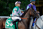 ARLINGTON HEIGHTS, IL - AUGUST 12: Grand Jete #5, ridden by Joel Rosario, during the post parade before the Beverly D. Stakes on Arlington Million Day at Arlington Park on August 12, 2017 in Arlington Heights, Illinois. (Photo by Jon Durr/Eclipse Sportswire/Getty Images)