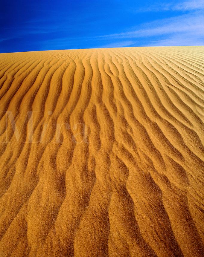 USA,Arizona, Monument Valley Navajo Tribal Park. close-up of sand ripple