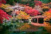 Tom Mackie, LANDSCAPES, LANDSCHAFTEN, PAISAJES, photos,+Adashino Nembutsu-ji Temple, Asia, Bentendo Hall, Daigo-ji Temple, Japan, Japanese, Tom Mackie, Worldwide, autumn, autumnal,+bridge, bridges, building, buildings, color, colorful, colour, colourful, fall, garden, gardens, horizontal, horizontals, lan+dmark, landmarks, maple, nobody, pond, red, reflect, reflection, reflections, scenery, scenic, seasons, tourist attraction, t+ree, trees, water, world wide, world-wide,Adashino Nembutsu-ji Temple, Asia, Bentendo Hall, Daigo-ji Temple, Japan, Japanese,+,GBTM190667-1,#l#, EVERYDAY