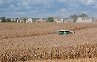 Combine Harvesting a Corn Field next to a Suburban Neighborhood