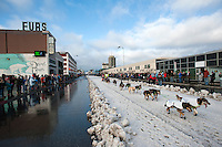 Nicolas Petit of Girdwood drives his dog team down 4th Avenue at the ceremonial start of the 43rd Iditarod dog sled race in downtown Anchorage. 79 mushers made their way 11 miles through the slushy streets of Anchorage in unseasonably warm weather and early rain. This year's official re-start will begin in Fairbanks because of poor trail conditions in Southcentral Alaska.