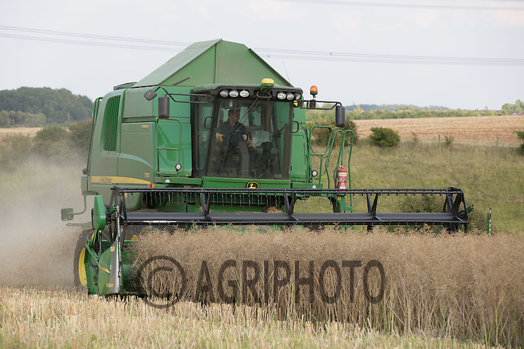 Harvesting oilseed rape <br /> Picture Tim Scrivener 07850 303986<br /> ….Covering agriculture in the UK….