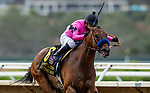 AUG 02: Fighting Mad with all Cedillo wins the clement L Hirsch Stakes at Del Mar Thoroughbred Club in Del Mar, California on August 02, 2020. Evers/Eclipse Sportswire/CSM