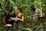 African Golden Cat (Caracal aurata aurata) biologist Laila Bahaa-el-din, Arthur Dibambo, and field assistant planning out route on map, Lope National Park, Gabon