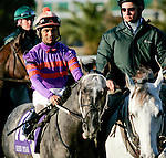 Feb 2010:  LetsGetItOnMon and Shaun Bridgemohan before the Risen Star Stakes at the Fairgrounds in New Orleans, La.