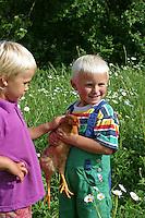 Kind, Kinder, Junge mit Huhn auf dem Arm, Besuch auf einem Bio-Bauernhof, Bauernhof, Landidylle