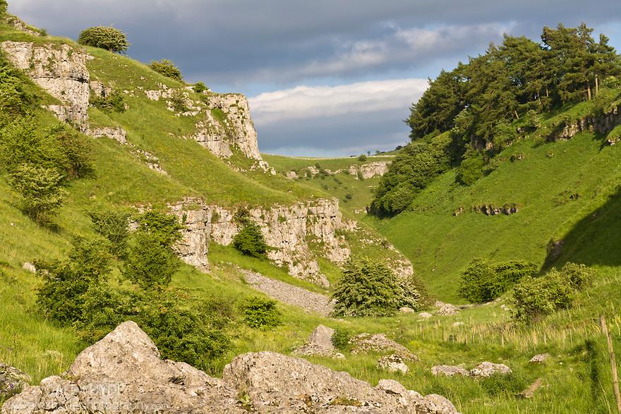 Carboniferous limestone outcrops in Lathkill Dale NNR, Peak District National Park, UK. June.