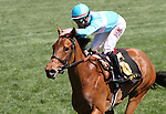 April 12, 2015: Lady Eli and jockey Irad Ortiz Jr. win the 27th running of the Appalachian presented by Japan Racing Association Grade 3 $125,000 at Keeneland Race Course for owner Sheep Pond Partners and trainer Chad Brown.   Candice Chavez/ESW/CSM