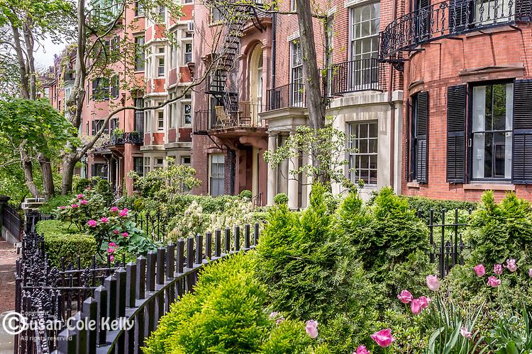 Mt Vernon Street homes on Beacon Hill, Boston, Massachusetts, USA