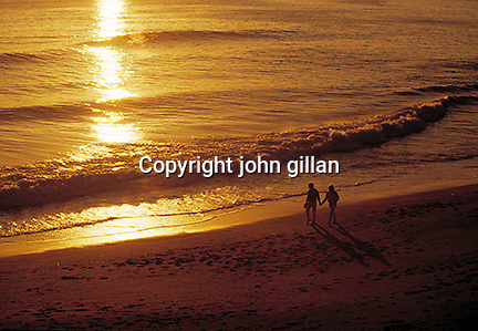 Couple walking on the shore at sunset.